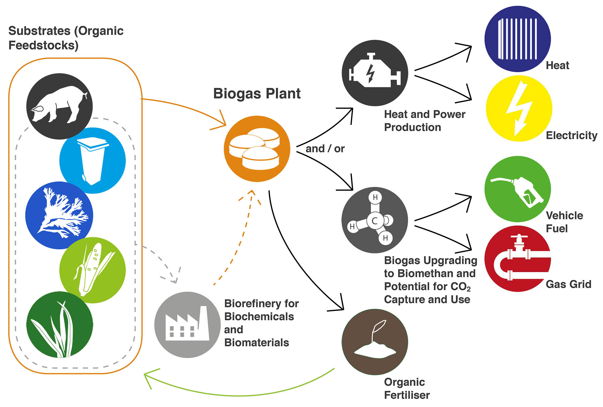 The image shows the value chain for biogas as described in the text.