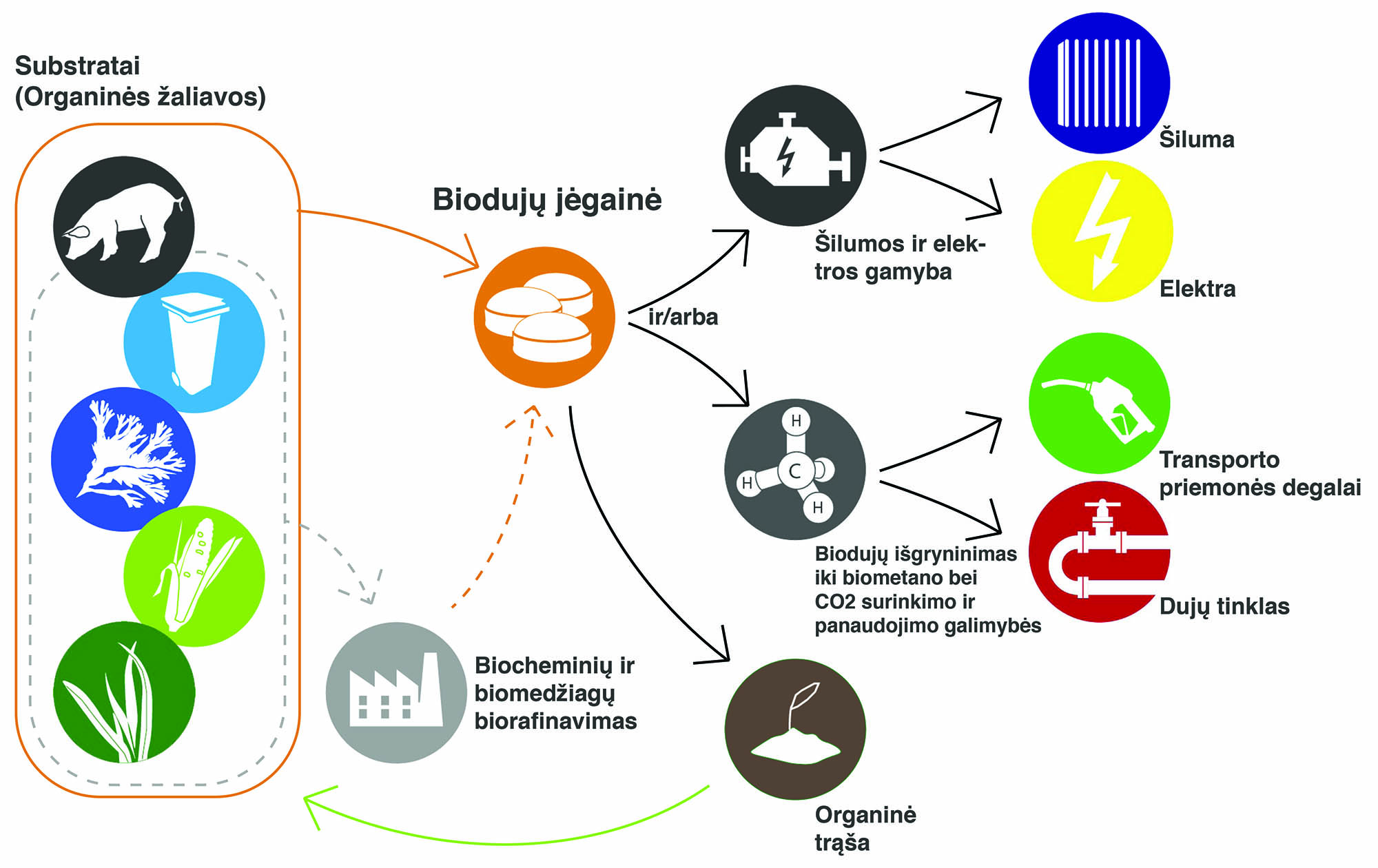 Biogas Value Chain
