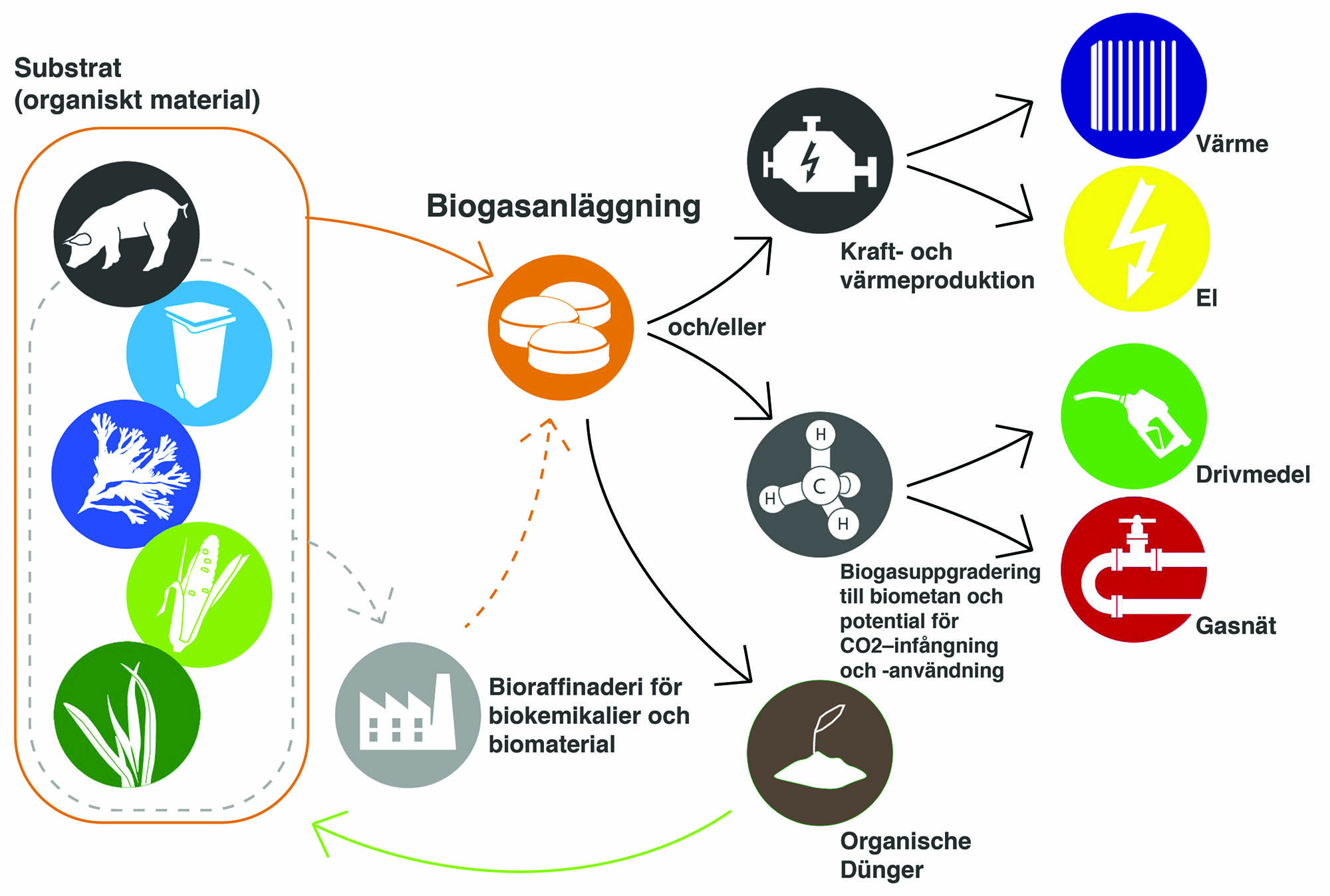 Biogas Value Chain